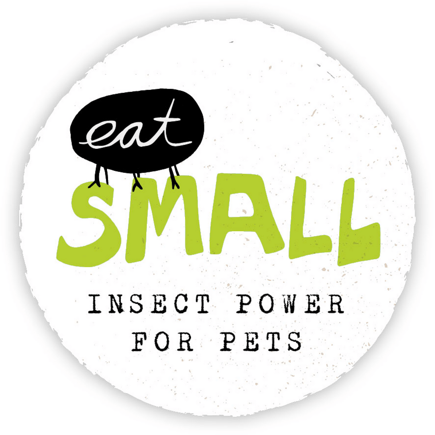 eat small GmbH, Insect Power for Pets